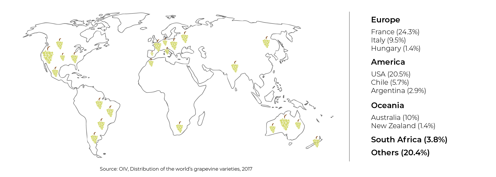Chardonnay Plantings Worldwide